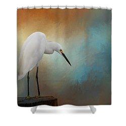 Watching Shower Curtain by Kim Hojnacki