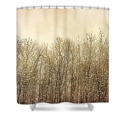 Shower Curtain featuring the photograph Watching Over by Kathi Mirto