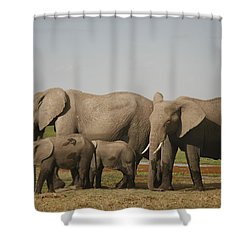 Shower Curtain featuring the photograph Watching The Children by Gary Hall