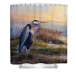 Watching The Sun Go Down Shower Curtain by Brian Tarr