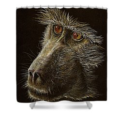 Shower Curtain featuring the drawing Watching You by Heidi Kriel