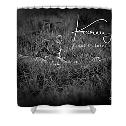 Shower Curtain featuring the photograph Watching You Watching Me by Karen Lewis