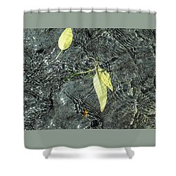 Water And Leaves Shower Curtain