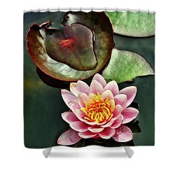 Water And The Lily Shower Curtain
