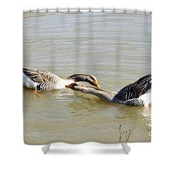 Water Arobics Shower Curtain by Audrey Van Tassell