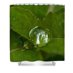 Water Ball Shower Curtain