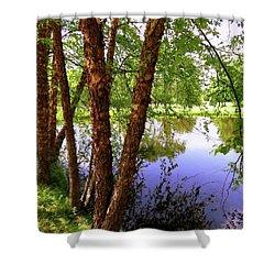 Water Birch Shower Curtain