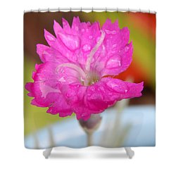 Water Bug Flower Shower Curtain