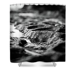 Water Carvings Shower Curtain