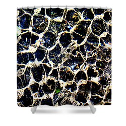 Water Cells Shower Curtain
