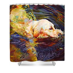 Water Dance 2 Shower Curtain by Kelly McNeil