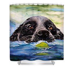 Water Dog Shower Curtain