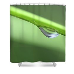 Water Droplet II Shower Curtain by Richard Rizzo