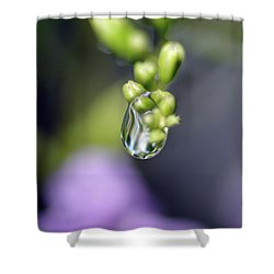 Water Droplet Iv Shower Curtain by Richard Rizzo