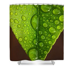 Water Droplets On Lemon Leaf Shower Curtain