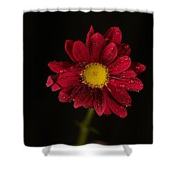 Shower Curtain featuring the photograph Water Drops On A Flower by Jeff Swan