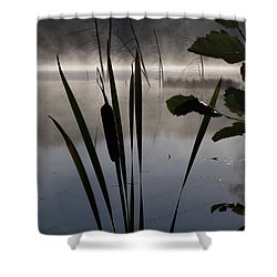 Water Fairies Shower Curtain by David and Lynn Keller