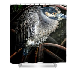 Water Fowl Iv Shower Curtain