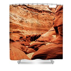 Shower Curtain featuring the photograph Water Holes Canyon  by Norman Hall
