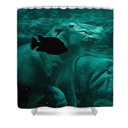 Water Horse Ballet Shower Curtain