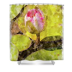 Water Hyacinth Bud Wc Shower Curtain by Peter J Sucy