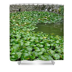 Water Lilies In The Moat Shower Curtain