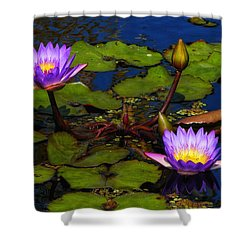 Water Lilies Iv Shower Curtain