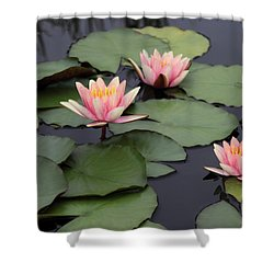 Shower Curtain featuring the photograph Water Lilies by Jessica Jenney