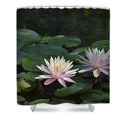 Water Lilies Shower Curtain by Linda Geiger