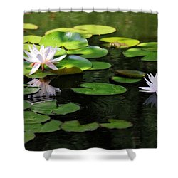 Shower Curtain featuring the photograph Water Lilies by Trina  Ansel
