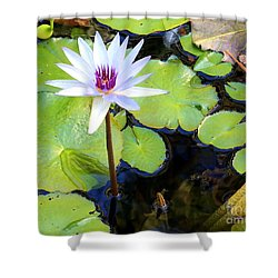 Water Lily 3 Shower Curtain