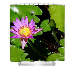 Water Lily 9 Shower Curtain