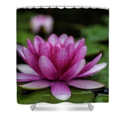 Water Lily After Rain Shower Curtain