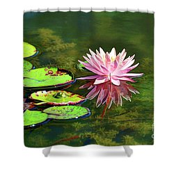 Water Lily And Frog Shower Curtain by Savannah Gibbs