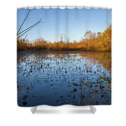 Water Lily Evening Serenade Shower Curtain