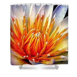 Water Lily Flower Shower Curtain