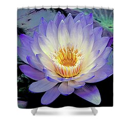 Water Lily In Lavender Shower Curtain by Julie Palencia