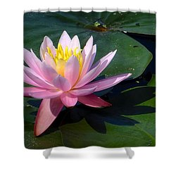Water Lily In Mountain Lake Shower Curtain
