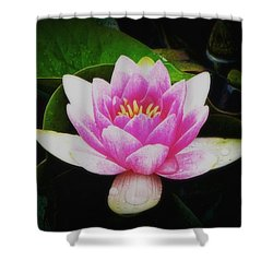 Shower Curtain featuring the photograph Water Lily by Karen Shackles