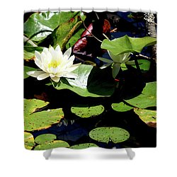 Shower Curtain featuring the photograph Water Lily by Meta Gatschenberger