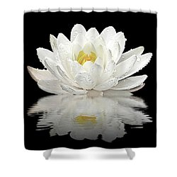 Water Lily Reflections On Black Shower Curtain by Gill Billington