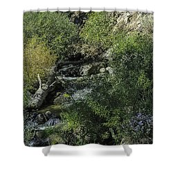Water Logged Shower Curtain