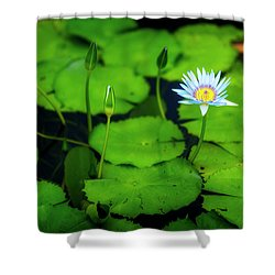 Shower Curtain featuring the photograph Water Logged by Ryan Manuel
