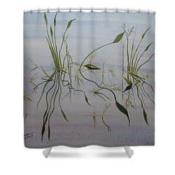 Water Music Shower Curtain