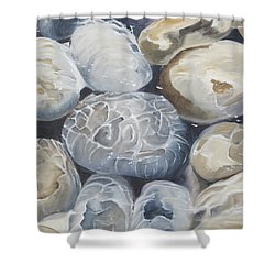 Water Of Pebbles Shower Curtain