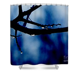 Water On Branch Shower Curtain