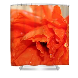 Water On Orange Shower Curtain by Christin Brodie