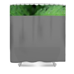 Water On The Fronds Shower Curtain