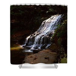 Water Path Shower Curtain