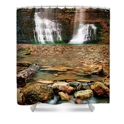 Water Path Shower Curtain by Tamyra Ayles